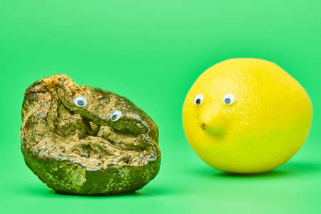 Two lemons with eyes. Rotten lemon and fresh lemon compare. Funny psychological comparison concept, green background. Unsuitable inedible food for cooking and new tasty lemon. 版權商用圖片