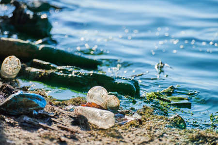 Environmental water pollution. Polluted river - dirty green water, garbage, waste and trash. Harmful water, toxic biohazard. Sewage and wastewater 免版税图像
