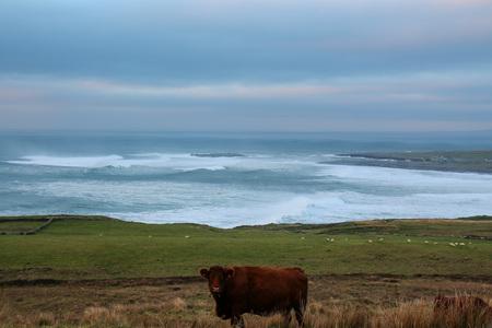 Ireland has many beautiful facets. From Dublin via Kilkenny to the Wild Atlantic Way