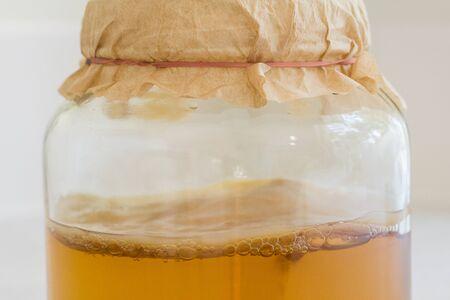 fermented: Fermented Kombucha Tea Stock Photo