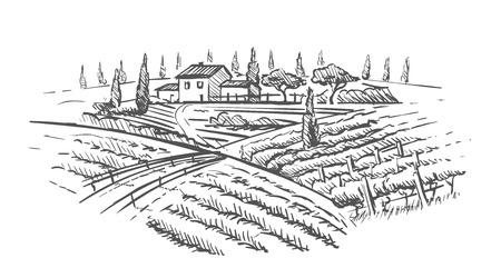 Rural landscape with villa, vine plantation and hills. Hand draw design illustration for wine label or poster.
