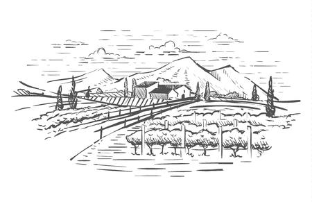 Rural landscape with villa, vine plantation and hills. Hand draw design illustration for wine label or poster. Ilustração Vetorial