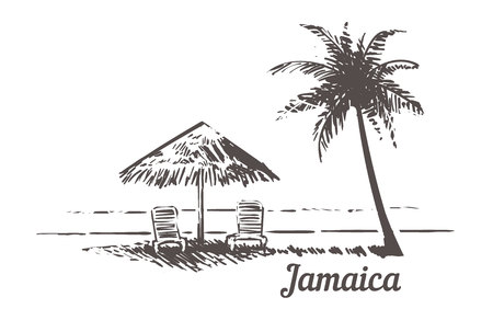 Jamaica sketch sunbeds under the beach umbrella, palm beach. Jamaica hand drawn vintage vector illustration. Isolated on white background.