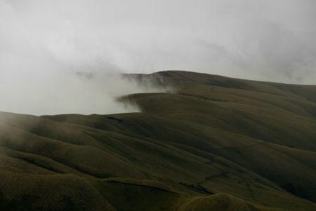 peaceful foggy hillside in south america, ecuador