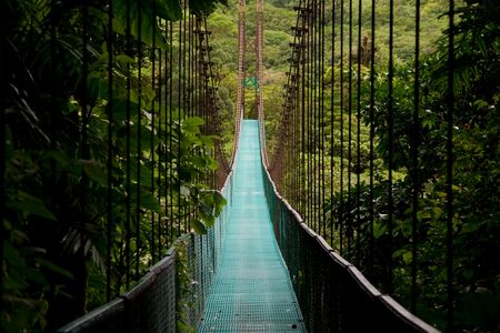 rope bridge: a hanging bridge in the costa rican jungle