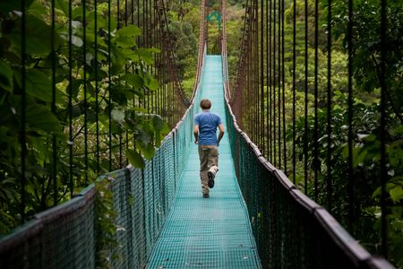 bridge over water: young man running over a jungle bridge