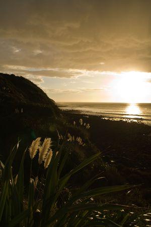 Sunset kitsch in Raglan, New Zealand