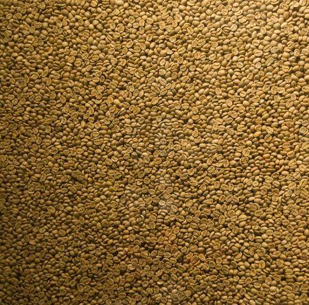 Raw Coffee Beans before roasting