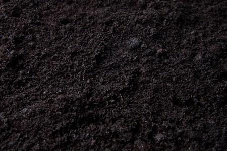flower or potting soil for use as a background structure