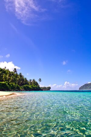panoramatic: nice view from the water to a white sand beach and palm tree coast