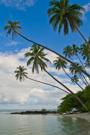 a tropical holiday island in samoa
