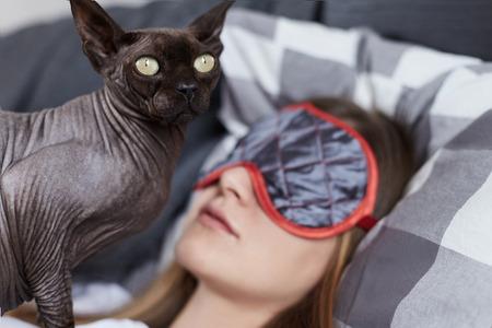 Sluit op portret van sfinx kat bewakende jonge damesdromen. Oosterse kat is klaar om te vechten met iedereen die zijn beste vriend stoort. Vriendschap concept.