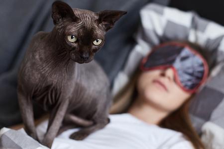Stoor niet. De jonge dame slaapt in haar slechte dragende oogmasker. Haar kattensfinx staat op haar borst klaar om iedereen aan te vallen die dichterbij komt. Focus op kat. Mens en dier concept.