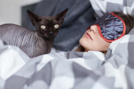 Focus op sphinx kat op zoek naar de bewaking van jonge dames rust. Ze draagt ??oogmasker dat zich schuil houdt voor het daglicht. Comfort, ontspannen, vrijetijdsbesteding.