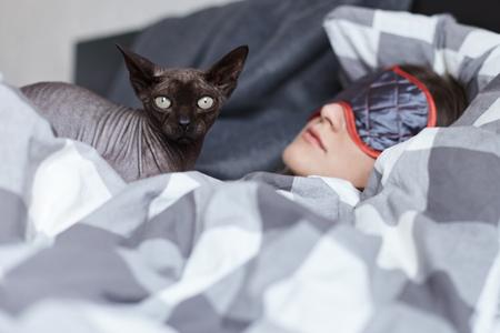 De unieke bodyguard. De oosterse kat zorgt voor de verzorging van de jongedame die tot diep in de nacht slaapt na een geweldig feest gisteravond. Om niet te worden gestoord door het licht dat ze draagt ??een oogmasker. Jeugd concept.
