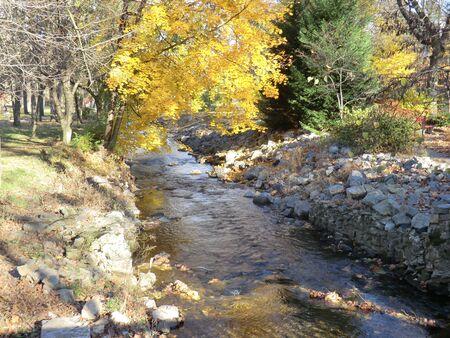 glistening: Glistening Stream in the fall