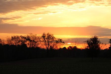 Silouhette sunrise