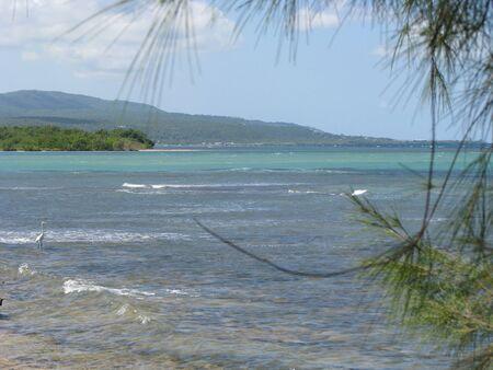 Tropical clear water beach