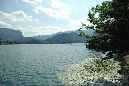 Lago di Bled Archivio Fotografico - 5412904