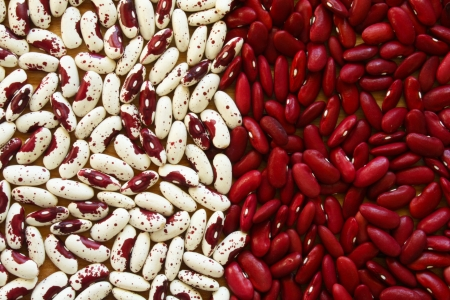 Soup Beans IV