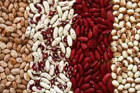 Soup Beans VI