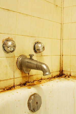 A filthy bathtub with mold and stains and dirty water. Concept for poverty or renovationrepair. Stock Photo