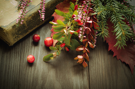 Vintage background with old book, forest flowers and berries. Nostalgic retro christmas composition.