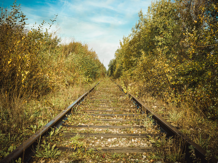 Old abandoned rusted railroad goes away through a forest.