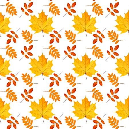 Autumn leaves seamless pattern. Stock Photo