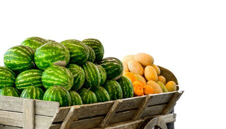 Pile of watermelons and melons isolated on white.
