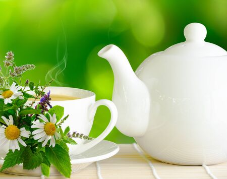 White teapot and cup of herbal tee with bunch of chamomile, mint and other herbs on green nature blurred background Banco de Imagens