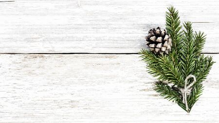 Christmas tree branch and pine cone