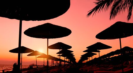 Rows of of sun beach umbrellas at sunset Фото со стока