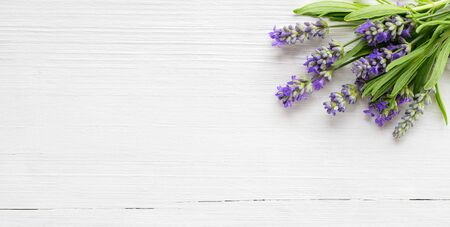 Lavender flowers on white wood background