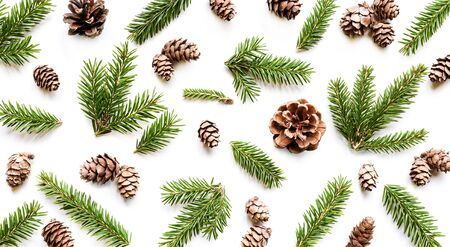 Fir branches and cones on white background. Christmas pattern.