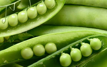 Close-up Fresh green peas in pods background. Healthy food