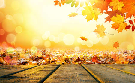 Wooden table o Colorful autumn leaves background