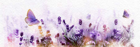 Watercolor Purple blossoming Lavender and flying butterfly in nature panorama. 版權商用圖片