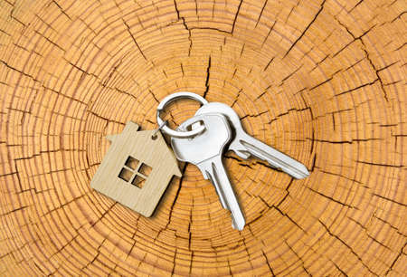 House key pair with house shaped keyring on cutted tree trunk with growth-rings background. Top view. Copy space