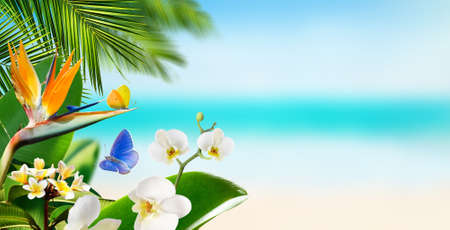 Butterflies flying around tropical flowers plants and palm leaves on a blurry background of beach and ocean