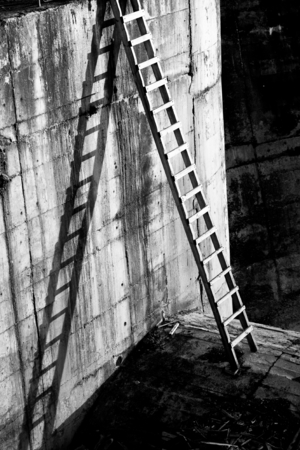 semblance: Black and white image of a propped up ladder with its cast shadow against the wall. Beautiful composition with detail to texture and use of lines.