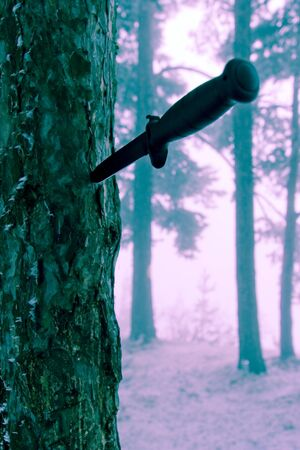 modified: Combat knife in tree bark, modified background colours . Stock Photo
