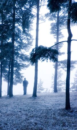 man standing alone: Man standing alone in a forest Stock Photo