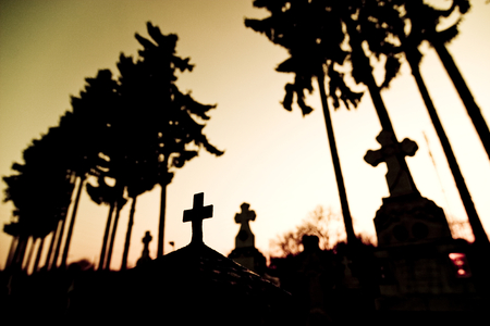 tombstones: Cemetery at sunset with tombstones and trees silhouetted against sky