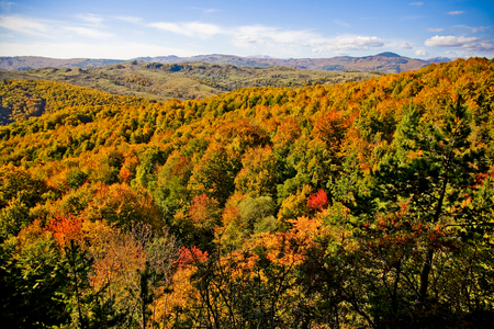 Colorful autumn landscape across rural, hilly countryside. colorful forest Stock Photo