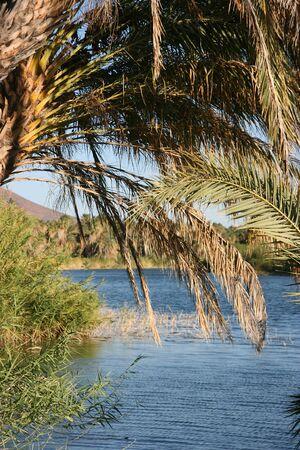 ignacio: Laguna (lagoon) de San Ignacio, San Ignacio, Baja California Sur, Mexico Stock Photo