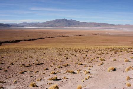 borax: Colourful Laguna Colorada on the Altiplano high plateau, Bolivia Stock Photo