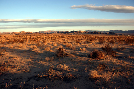 Arid landscape in the Mojave desert near Twentynine Palms at sunset, California, USA Stock fotó