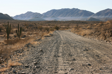 Long distance cycling on remote and deserted gravel roads, Sonoran Desert, Baja California Norte, Mexico