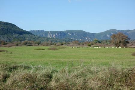 Flat Plain, Corfu Trail, Greece